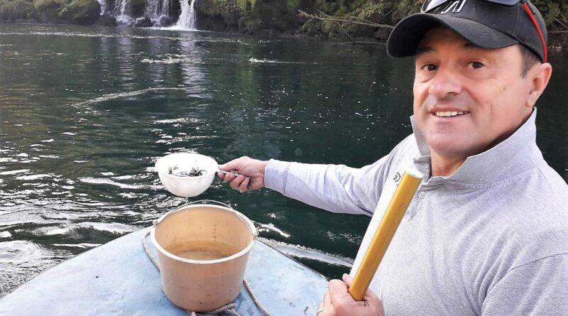 Дрина - Раде Марковић у акцији порибљавања Дрине са поточном пастрмком