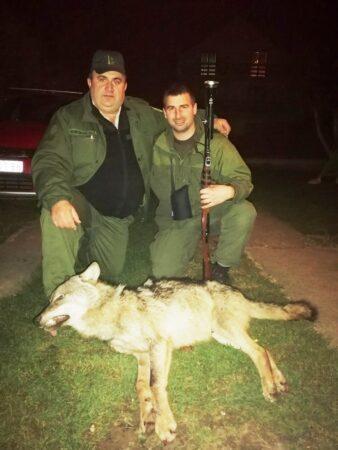 Јелисавчић и Кнежевић са одстрељеним вуком