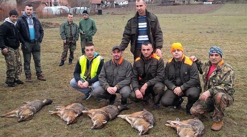 Ловци из Бачеваца у хајци на шакале
