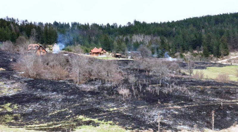 Пожар у Заовинама на Тари